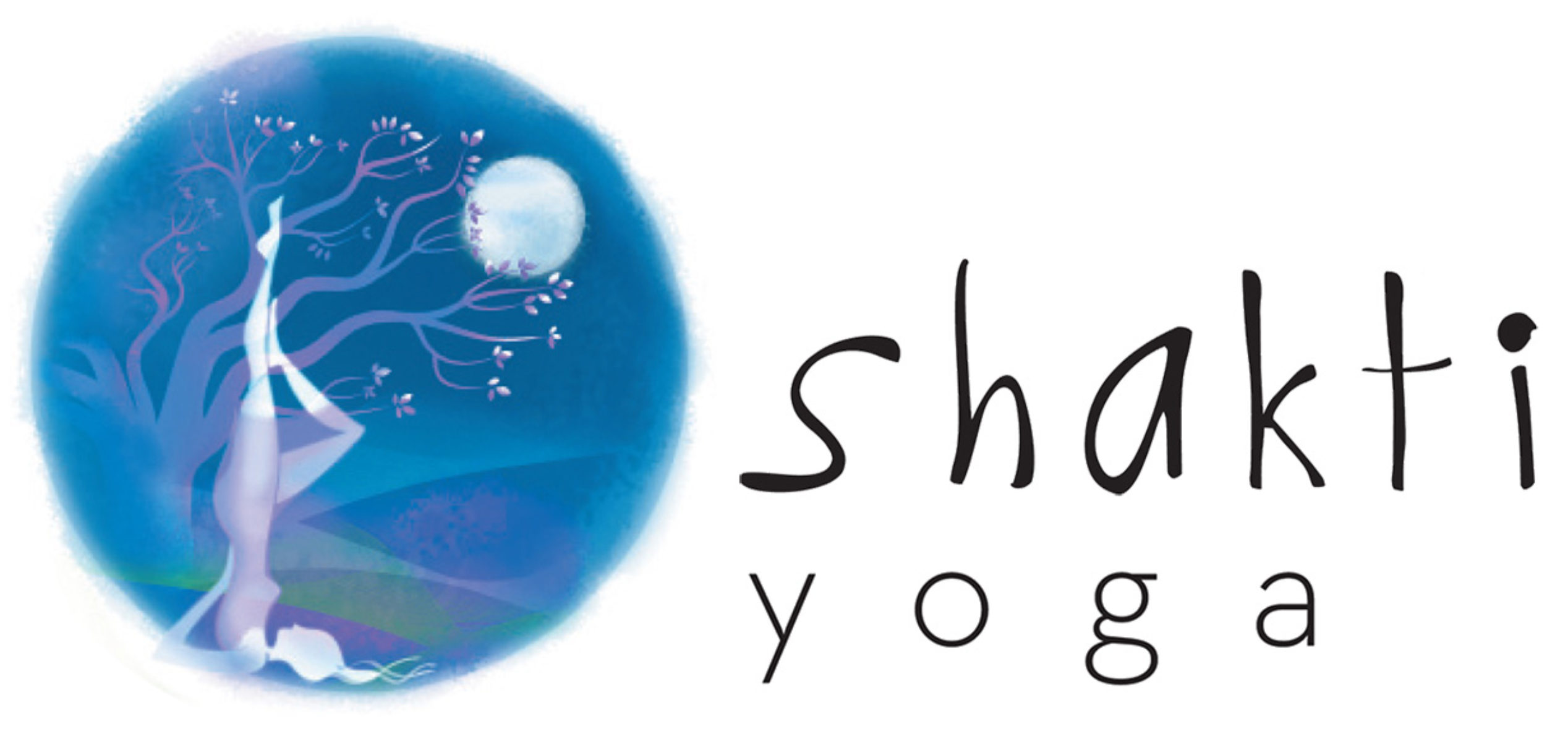 Shakti Yoga Méditation